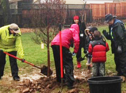Harvey Scott students plant trees in Wellington Park