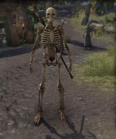 Gemstone of Skeletal Visage - Shadowfen quest