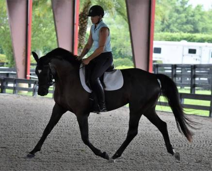 Istriana at her first show!