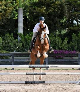 Grady schooling at his first show