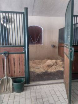 A stall at Casa Lusitana where some of my horses will be staying