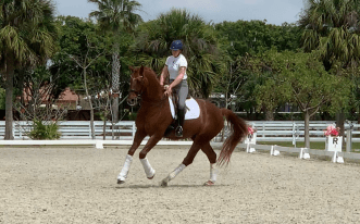 Florida Canter