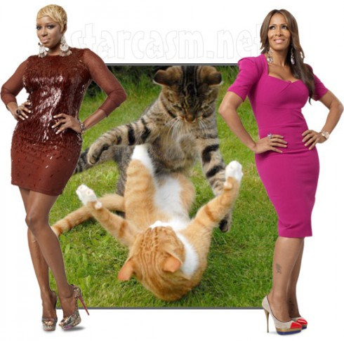 Nene Leakes and Sheree Whitfield are in a catfight over Real Housewives of Atlanta Season 4