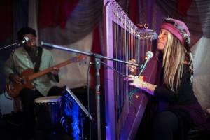 Fanny Starchild and Vegari Cendar Mystical Harp Music and bass 2