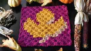 Maple Leaf C2C Graph