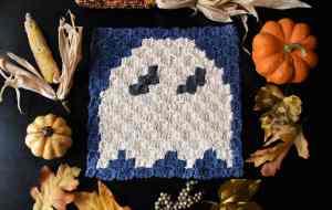 halloween ghost C2C (3)
