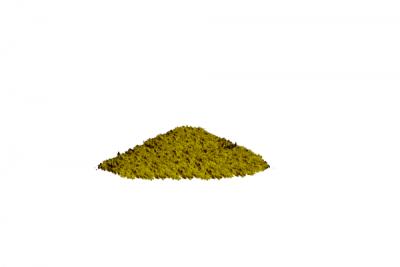 green-bali-50x-1