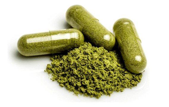 kratom capsules powder