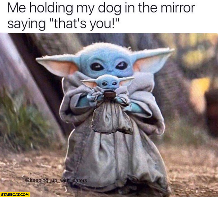 Please Love Me R Babyyoda Baby Yoda Know Your Meme
