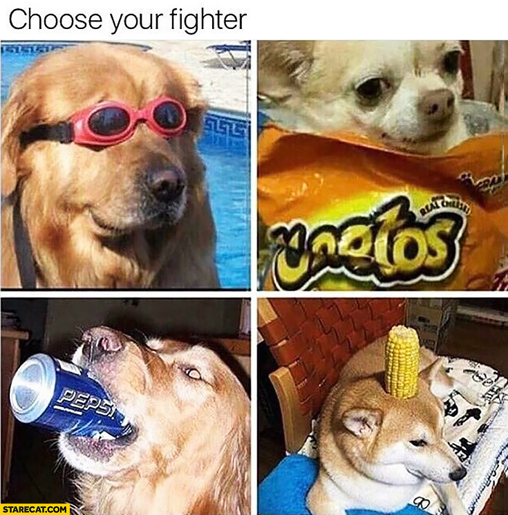 Choose Your Fighter Silly Dogs