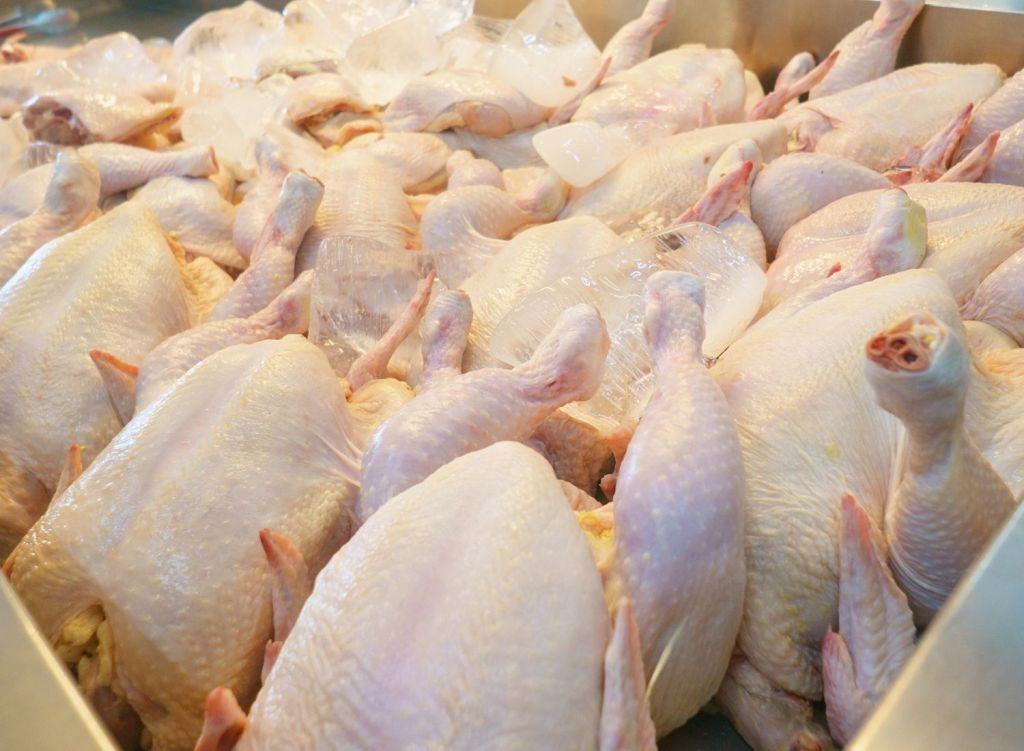 Ciri ciri Daging Ayam