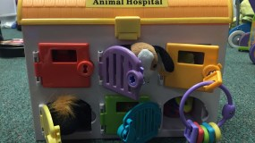 Favorite Toys: The Vet