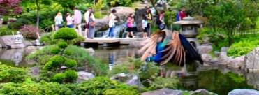 Kyoto Gardens_2472_1024