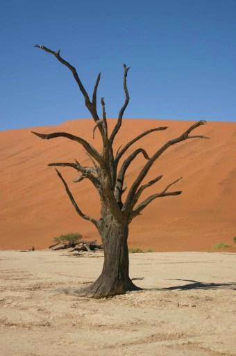 Red desert in Namibia