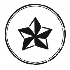anna: stargirl art