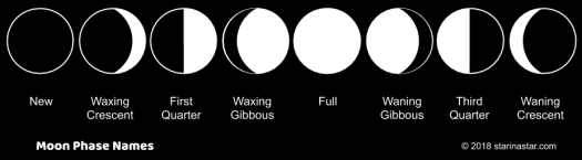 The Moon Phases names in the correct order showing the progression from new moon, through waxing moons, to full moon, then back down through waning moons, to new moon again in a cycle