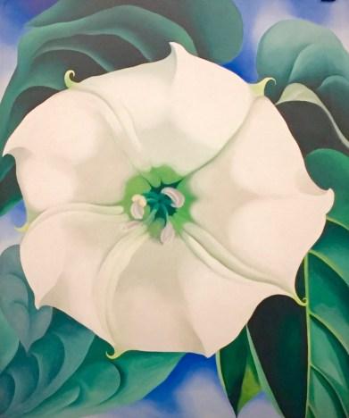Georgia O'Keeffe, Jimson Weed, 1936 © starkandart.com