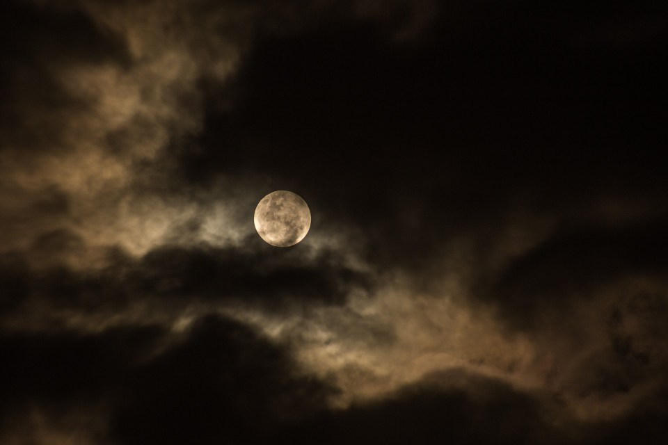 Moon Lost her Memory
