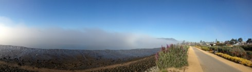 Tam, sun, fog, we have it all.