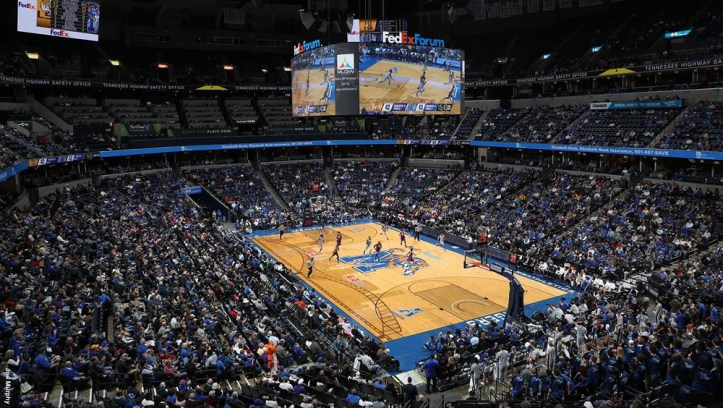 tigers fedexforum photo.jpg