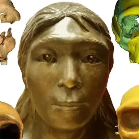 The face restoration of the skull of Hualong Cave No. 6. The Hualong Cave No. 6 fossil skull was virtually reconstructed skull then physically reconstructed and sculptured to create the reconstructed image. (Ancient Spine Institute, Chinese Academy Of Sciences/Zenger)