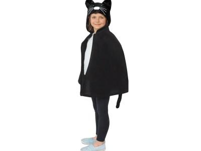 Laste kostüüm kassi keep