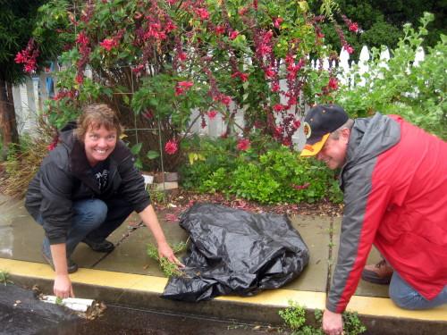 Joyce and Scott, weeding in the rain
