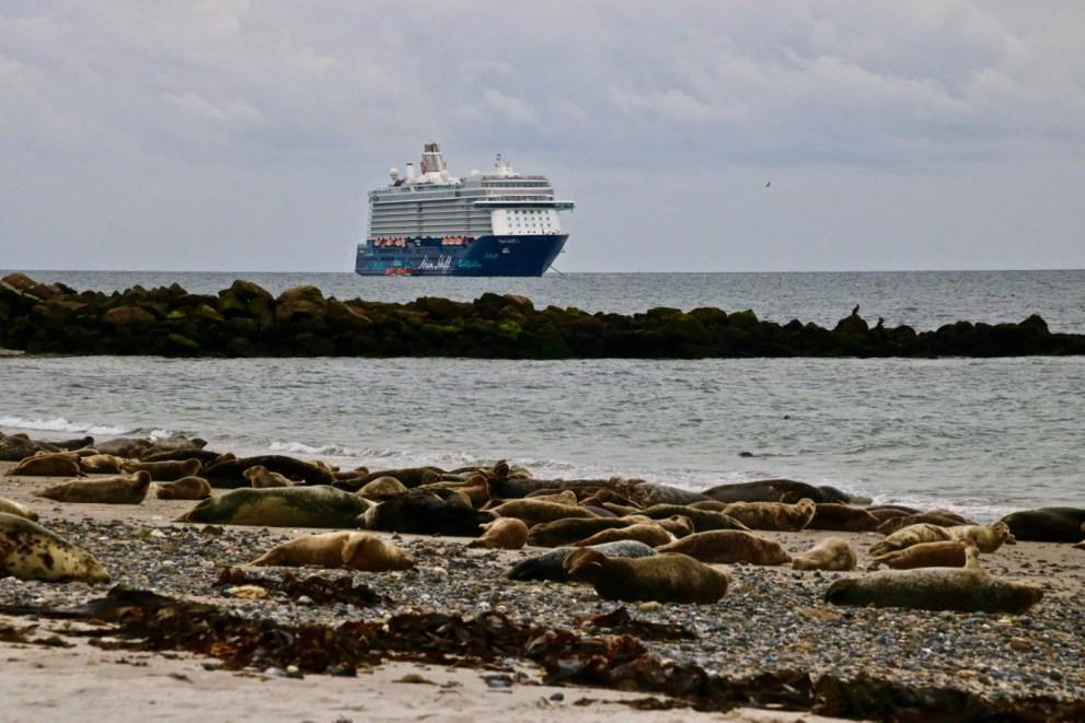 Mein Schiff 3 ankert vor Helgoland