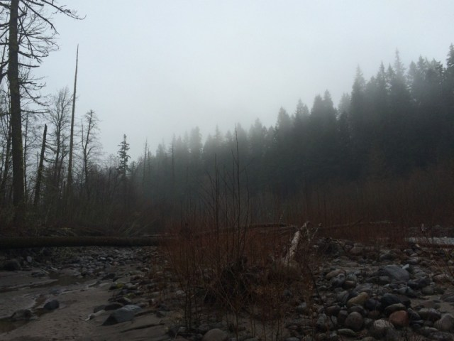 Oregon - 16