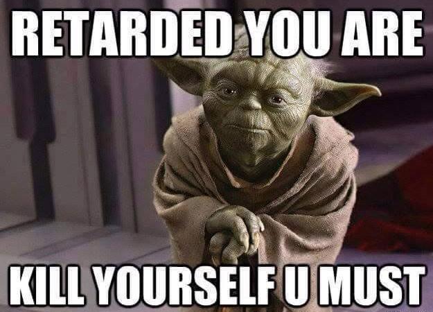 Master Yoda: Retarded you are