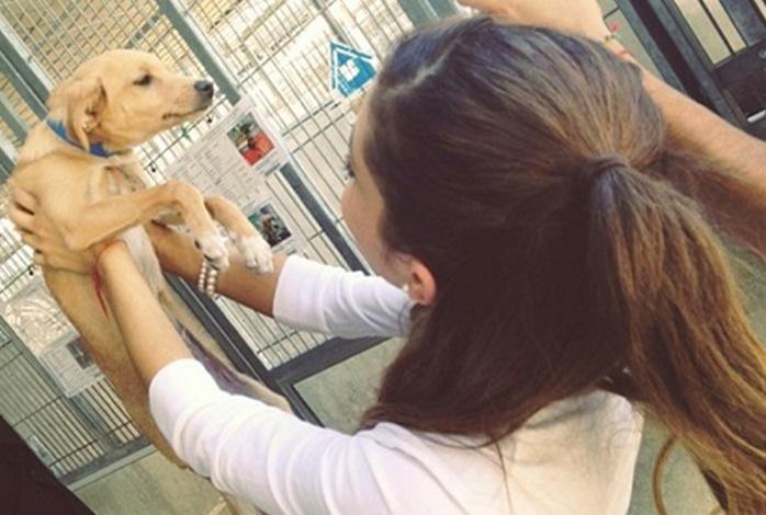 Dog Mom Ariana Grande She Has 4 Pets