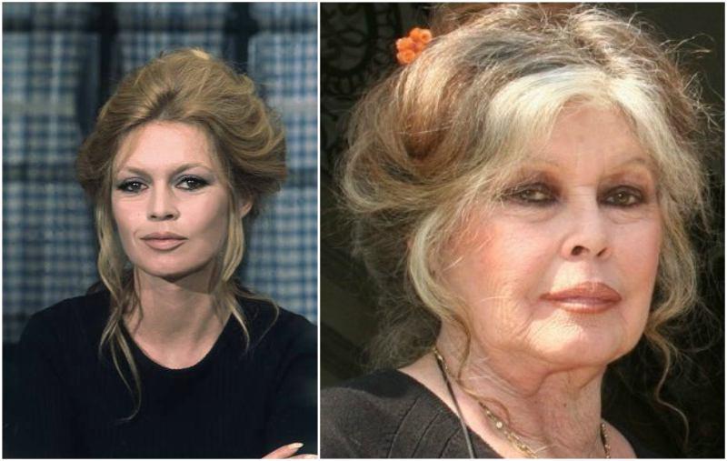 Legendary Brigitte Bardots Height Weight Iconic Figure