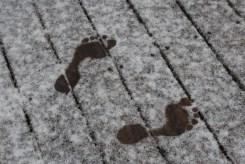 Snow feet