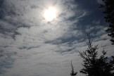 Sunshroud