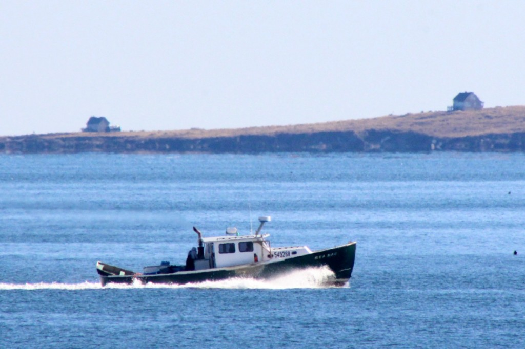 Don't see many fishing boats here this time of year, but…