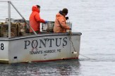 Pontus28
