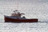 SeaWife8