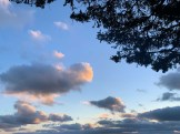 IMG_9914Clouds