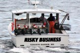 IMG_3468RiskyBusiness