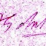 APJ Abdul Kalam Signature