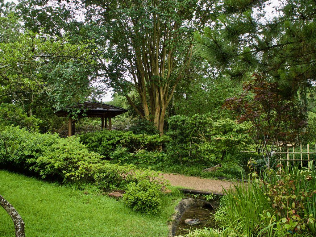 Japanese gardens Hermann Park instagram image