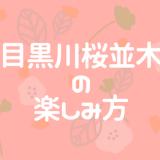 目黒川の桜並木の楽しみ方