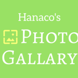 photo-gallary-start