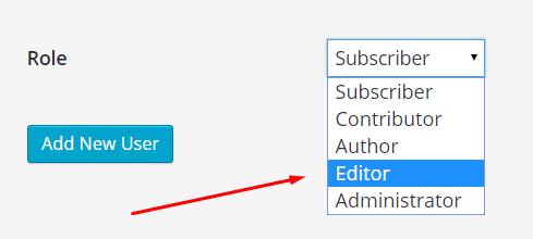 compte éditeur dans WordPress