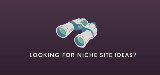 choose the best niche site idea