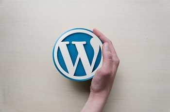 Gebruik wordpress om een blog te maken