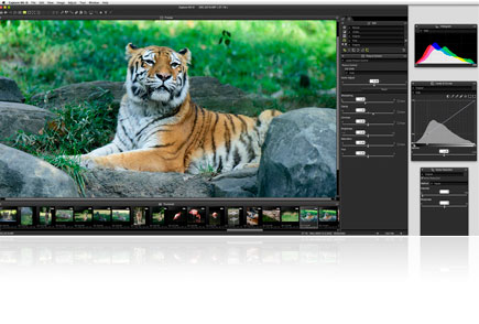 Nikon Capture NX-D RAW Processing Software | Software for Nikon Digital Cameras