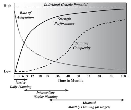 Image result for strength progression curve