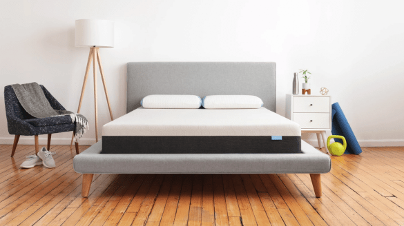 Bear - Best Mattresses for Back Pain