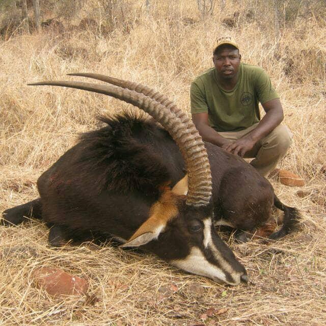 Interview with a Safari Operator: Hartley Simbarashe Gweshe